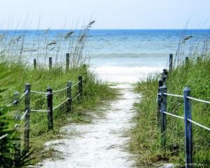 Ocean Pathway