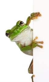 frog crop